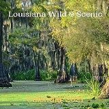 Louisiana Wild & Scenic Calendar 2021