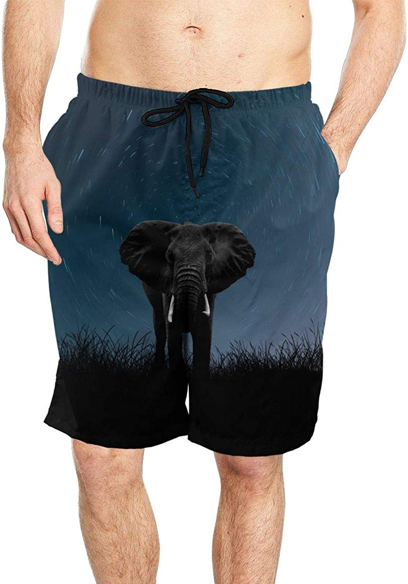 DASMUS Elephant in Grass Among The Stars Mens Drawstring Beach Board Shorts Swim Trunks with Mesh Lining