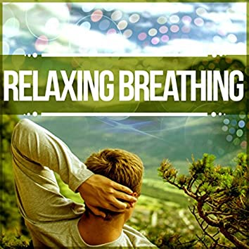 Relaxing Breathing – Background Music for Learning, Study Skills, Brain Exercises, Increase Concentration, Improve Memory, Nature Sounds, Peace of Mind, Creative Thinking