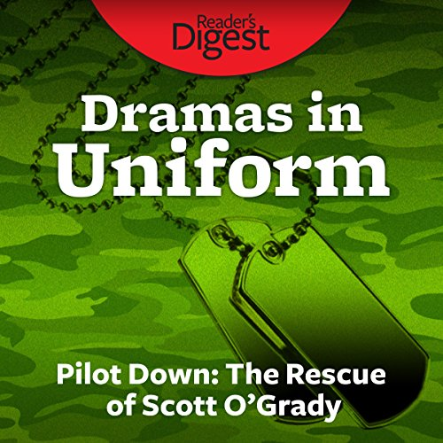 Pilot Down audiobook cover art