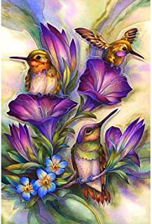 DIY 5D Diamond Painting by Number Kits, Full Drill feilin Hummingbird Embroidery Rhinestone Diamond Painting for Adult Cross Stitch Arts Craft Supply for Home Wall Decor DIY Gift Idea (F, 40x50cm)