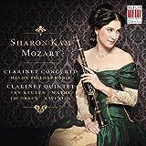 Quintet for Clarinet, Two Violins, Viola and Violoncello in A Major, K. 581: I. Allegro
