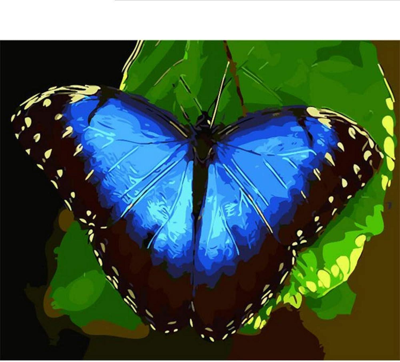Waofe Rahmen Schmetterling Diy Malerei By Zahlen Tiere Moderne