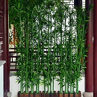 Best bamboo tree screen Reviews