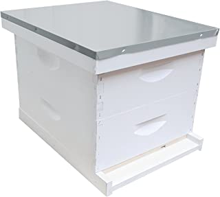 10-Frame Complete 6-5/8-Inch Hive Kit, Assembled, Made in The USA
