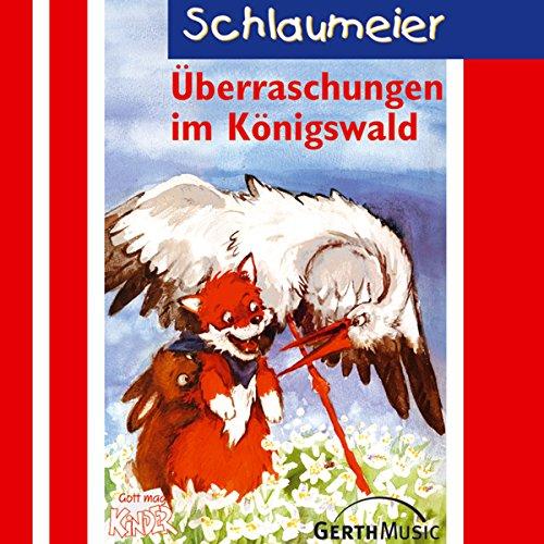 Überraschungen im Königswald cover art