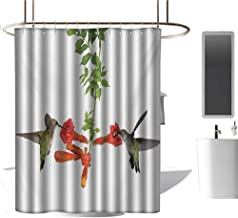 White Shower Curtain Hummingbirds,Two Hummingbirds Sipping Nectar from a Trumpet Vine Blossoms Summertime,Red Black Green,Washable, Eco-Friendly,for Bathroom Curtain 60