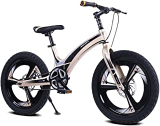 LISI Bicicleta de los niños de aleación de magnesio de 20