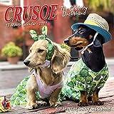 Crusoe the Celebrity Dachshund 2021 Mini Wall Calendar (Dog Breed Calendar)
