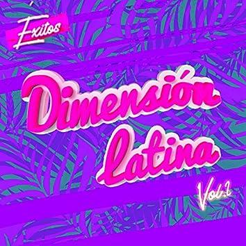 Éxitos Dimensión Latina, Vol. 2 (Versión 2010)
