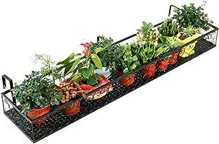 Amazon.es: FENDOU STORE - Soportes para plantas / Huertos urbanos ...