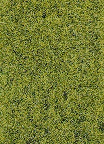 Heki 3368 Statischer Wildgras Waldboden, Höhe 0,6 cm, Mehrfarbig