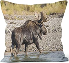 Nine City Bull Shiras Moose Crossing a River Throw Pillow Cushion Cover,HD Printing Decorative Square Accent Pillow Case,40