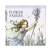 Flower Fairies フラワーフェアリーズ メモパッド・スクエア Lavender_blue
