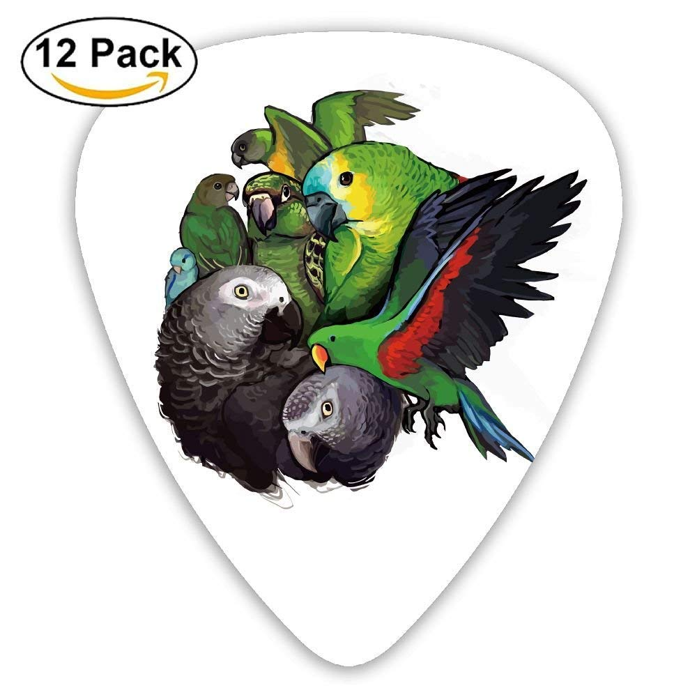 Parrot Birds Classic Guitar Pick (12 Pack) for Electric Guita Bass: Amazon.es: Instrumentos musicales