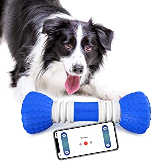 go bone dog toy