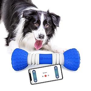 Smart Bone for Dog