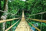 Landschaften - Dschungel Hängebrücke - Jungle Bridge -