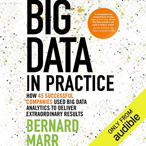 Big Data in Practice audiobook cover art