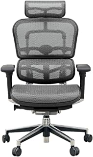 エルゴヒューマン ベーシック オフィスチェア グレー ヘッドレスト付き エラストメリックメッシュ ergohuman BASIC EH-HAM KM-10 幅67×奥行き66×高さ115(cm)
