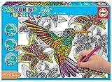 Educa - Hummingbird Puzzle para Colorear, 300 Piezas, Multicolor (17083)