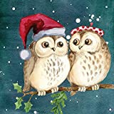 5D DIY Diamond Painting Crystal Rhinestone Kits for Adults Full Round Drill Cross-Stitch Patterns?for Decor Cute Owl 11.8x11.8in 1 Pack by Bemaystar