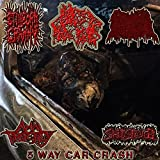 Aids Pumped Corpse Vagina in Trashcan [Explicit]
