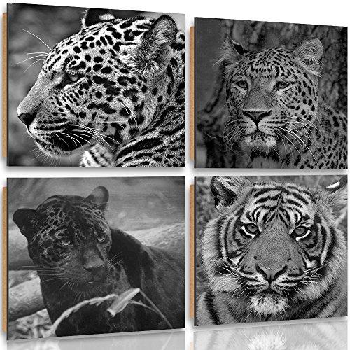 Feeby Frames, Cuadro de pared - 4 partes - Cuadro decorativo, Cuadro impreso, Deco Panel, 80x80cm, SAFARI, ÁFRICA, ANIMALES, TIGRE, PANTERA, LEOPARDO, BLANCO Y NEGRO