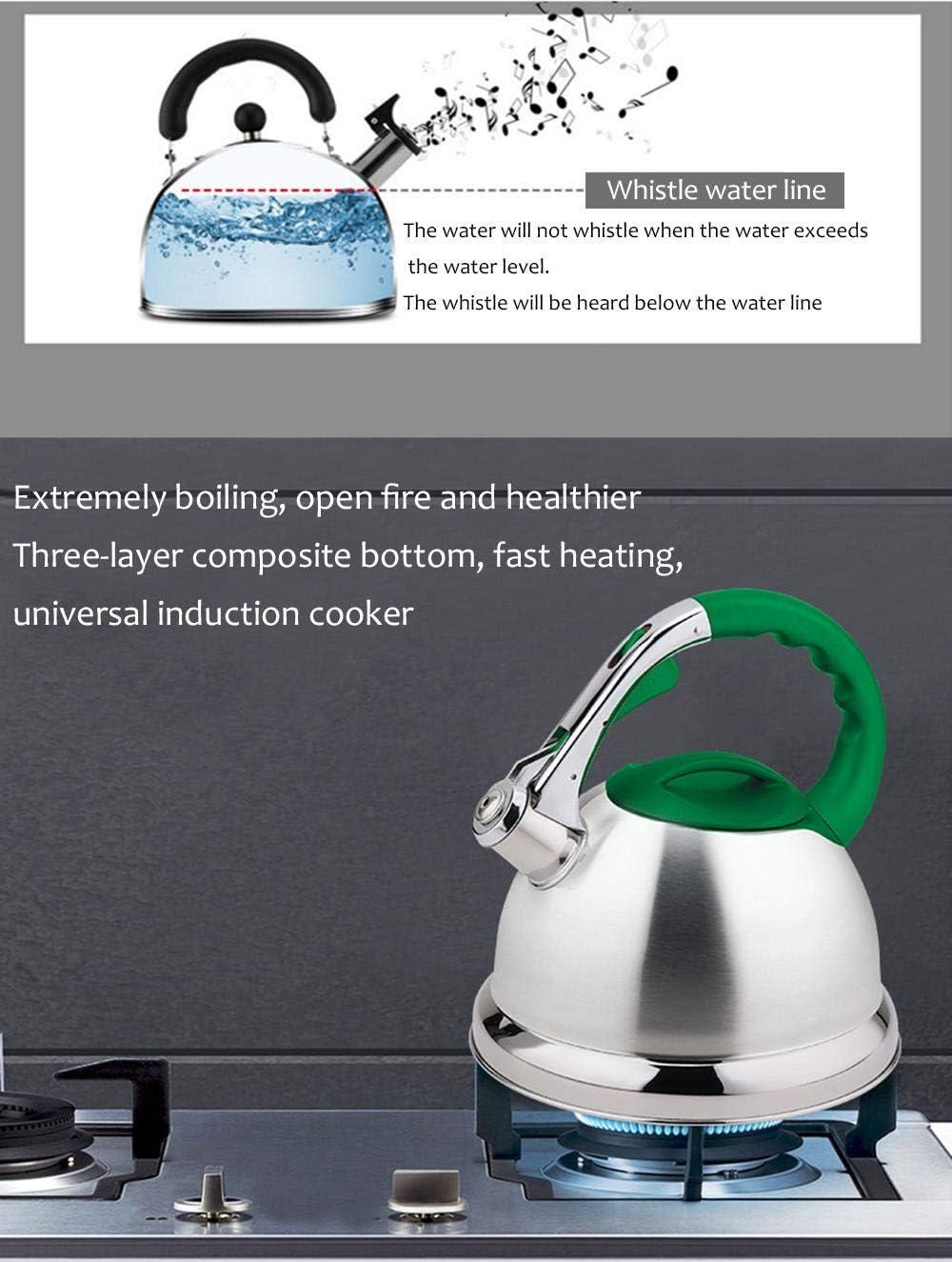 doble fondo acero inoxidable hervidor de agua de 4,5 l de gas Verde estufa universal hervidor de agua hirviendo Whistling Kettle casa o viajes al aire libre