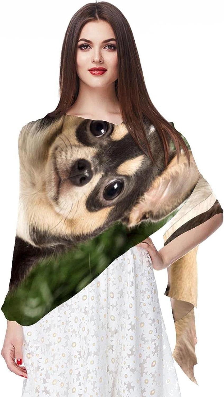 Scarfs for Women Lightweight Print Floral Pattern Scarf Shawl Fashion Scarves Sunscreen Shawls, Animal Dog Chihuahua