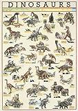Educational - Bildung - Poster - Dinosaurs Dinosaurier