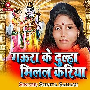 Gaura Ke Dulha Milal Kariya - Single