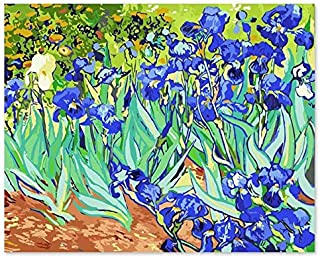 Superlucky Digital-Ölgemälde DIY Dekoration Wohnzimmer Wohnzimmer Wohnzimmer Schlafzimmer Sofa Hintergrund berühmte Malerei Van Gogh Iris 40x50cm mit Rahmen B07K5XVL38  Zuverlässige Qualität 8d28c5