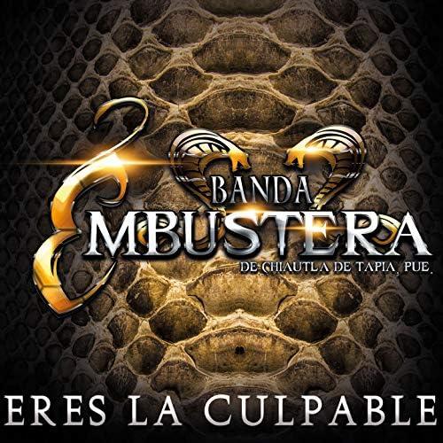 Banda Embustera de Chiautla de Tapia Puebla
