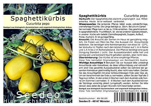 Seedeo® Kürbis Spaghettikürbis (Cucurbita pepo) 10 Samen BIO