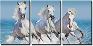 andalusian horse art