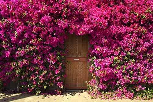 Puzzle Puzzle in Legno Fai da Te 1000 Pezzi Giardino Fiorito di Primavera Regali Unici E Decorazioni per La Casa Puzzle 75X50CM