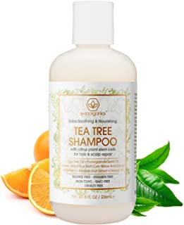 Organic Tea Tree Oil Shampoo - Natural Moisturizing Shampoo to Hydrate Dry Hair & Soothe Flaking Itchy Scalp with Plant Stem Cell Technology. Premium Sulfate Free Tea Tree Shampoo for Dry Itchy Scalp