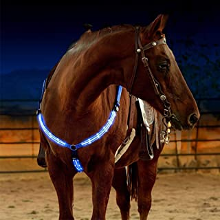 Best cheap breastplates for horses Reviews