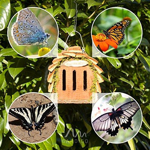 Schmetterlingskasten von Gardigo - 6