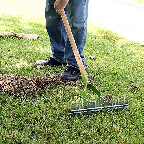 AMES 2915100 Adjustable Self-Cleaning Thatch Rake with Hardwood Handle, 61-Inch