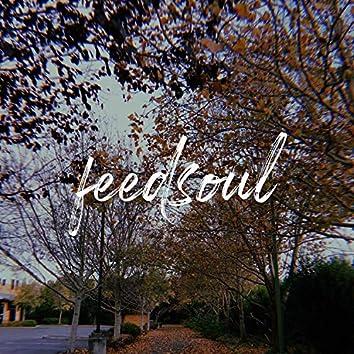 FeedSoul