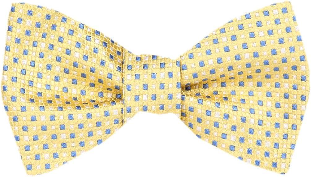 FBTZ-1711 - Mens Silk Bow Ties