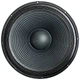 Seismic Audio - 18' Raw Subwoofer/Woofer/Speaker - PA DJ Pro Audio Replacement