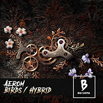 Birds / Hybrid