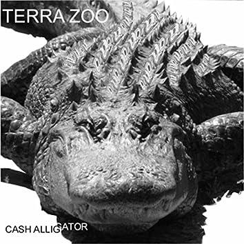 Cash Alligator