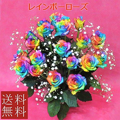 【花言葉:無限の可能性】アレンジメント レインボーローズ(20本) 7色のバラ