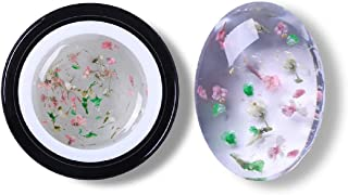 BORN PRETTY 5ml Floral UV Gel Varnish Lucky Gel Paint Dried Flowers Nail Art Glue 3D DIY Desgin Natural Fairy Nail Gel Polish (BP-FFG14)