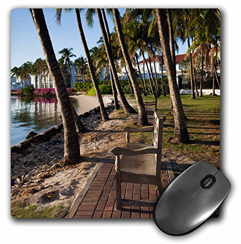 Danita Delimont - Florida - Palm Beach Lake Trail, bank. - MousePad (mp_205842_1)