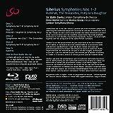 Immagine 1 sinfonie nn 1 7 kullervo
